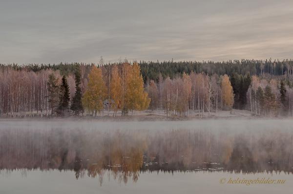 Grytbo från sjön Gryten
