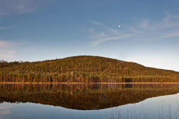 Bursjöbergets Naturreservat