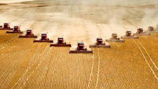 jordbruket